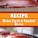 Home Cured And Smoked Bacon Recipe
