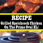 Grilled Spatchcock Chicken On The Primo Oval XL
