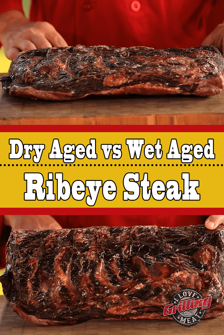 Dry Aged vs Wet Aged Ribeye Steak (Lessons From A PRO)