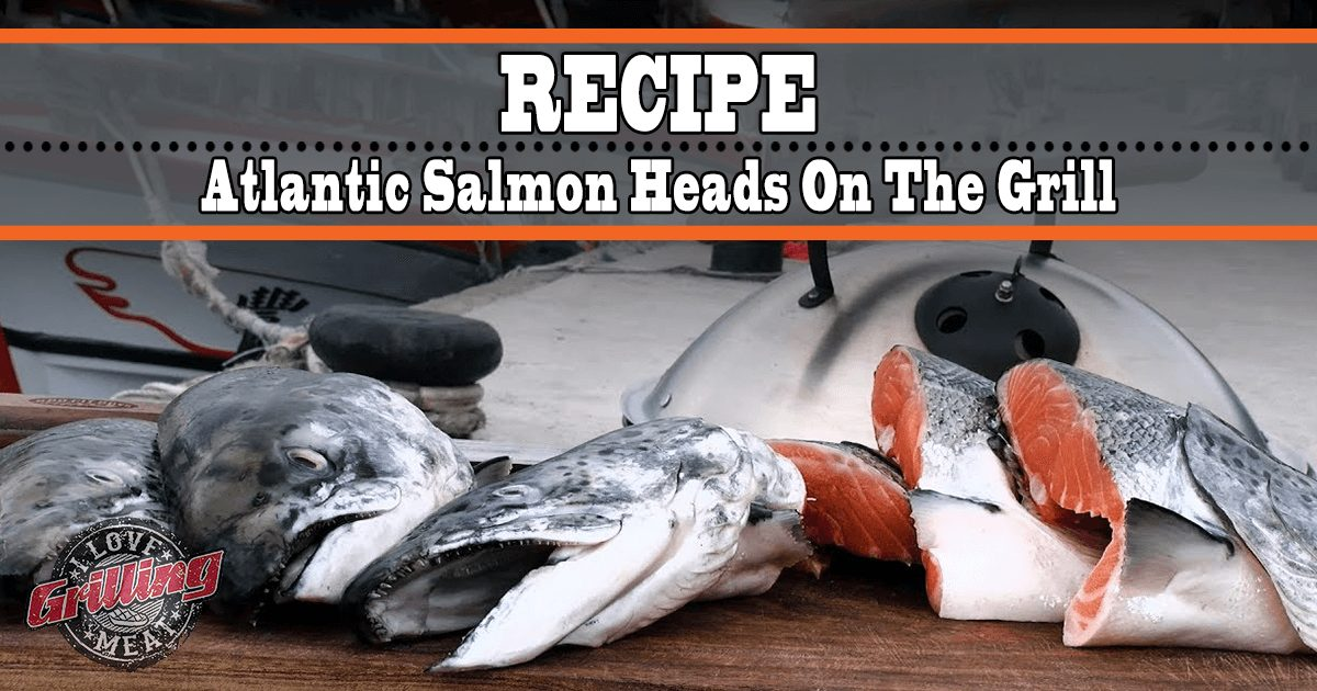 grilled salmon heads recipe atlantic salmon on the grill