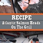Grilled Salmon Heads Recipe – Atlantic Salmon On The Grill